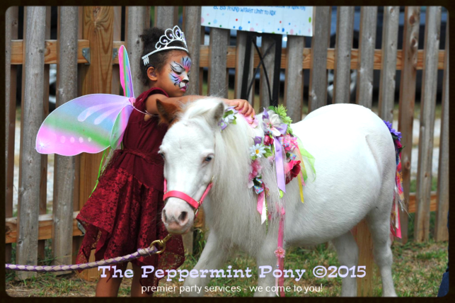 tiger face painted fairy child decorating Lily the mini horse at her birthday party