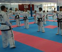 The Programs of Warrior Code Taekwon-Do Academy
