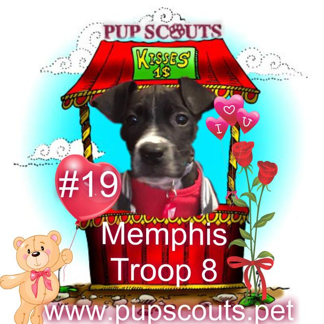 Pupscouts Smooch a Pooch Memphis Troop 8