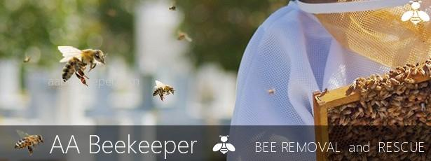 Canyon Lake Bee Removal