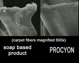 example of procyon benefits on carpet