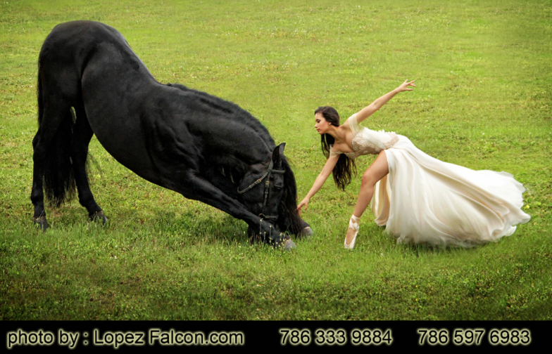 Horses for quinceanera photo shoot in miami quince pictures with horse redland fl homestead el portal andaluz
