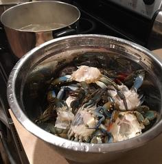 Cooking Florida Blue Crabs