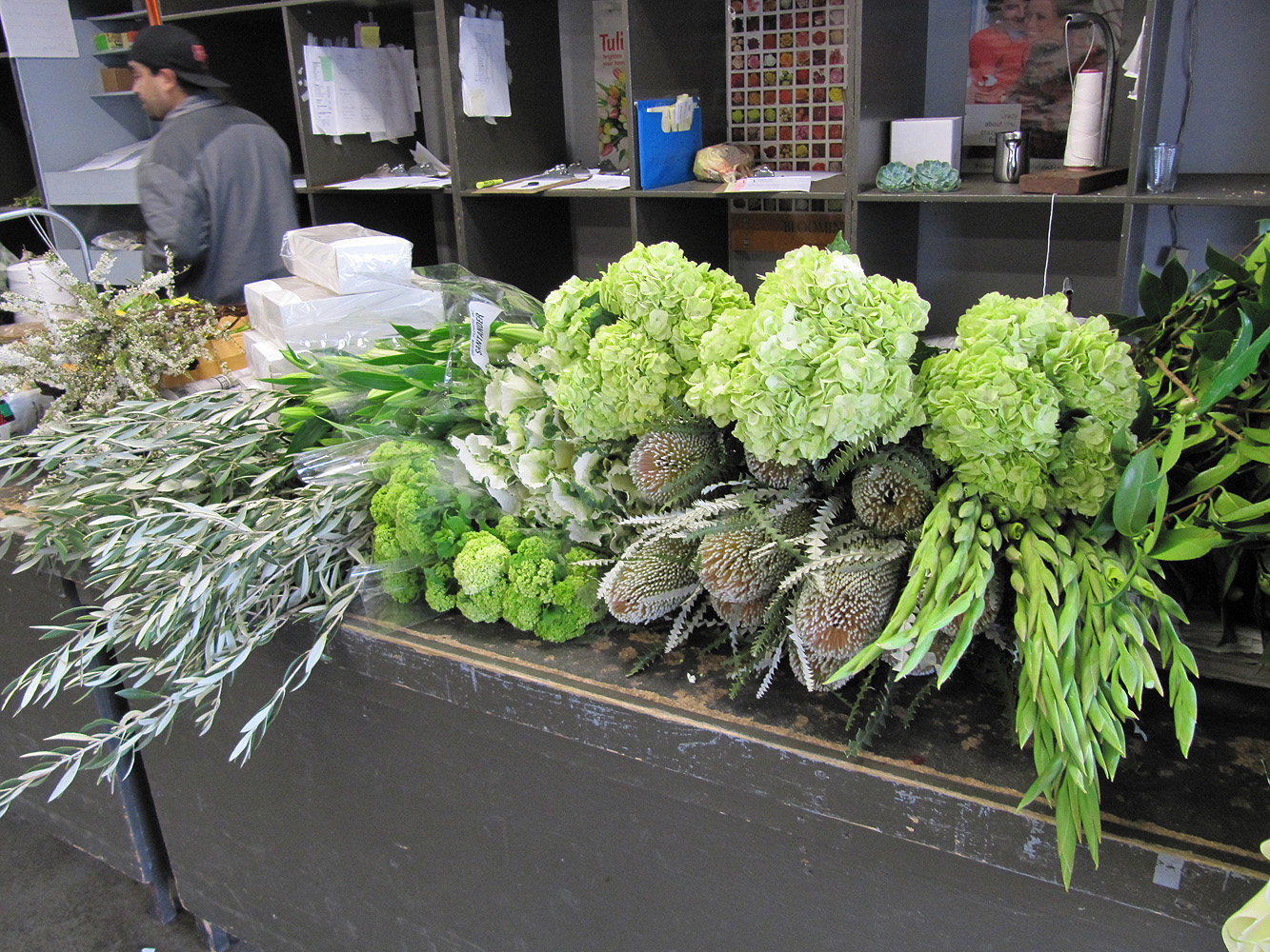 Sf flower mart in san francisco ca san franciscos wholesale flower market sffm izmirmasajfo Image collections