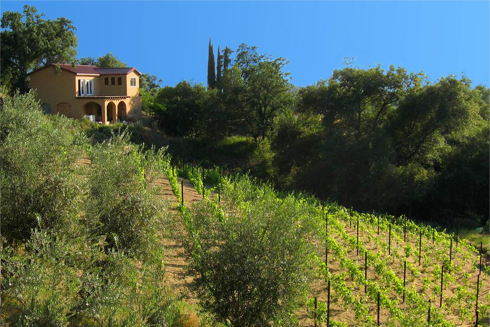 Panoramic photo of the winery and vineyards at Cristaldi Vineyards