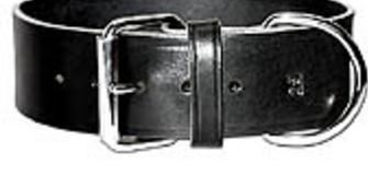 LATIGO COLLAR Comes in Black or Brown from size 10 to 24 inches