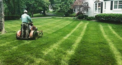 RESIDENTIAL LAWN CARE MORIARTY NM