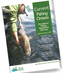 Recreational Fishing Guide and Regulations
