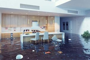 Water Damage Clean up Evansville