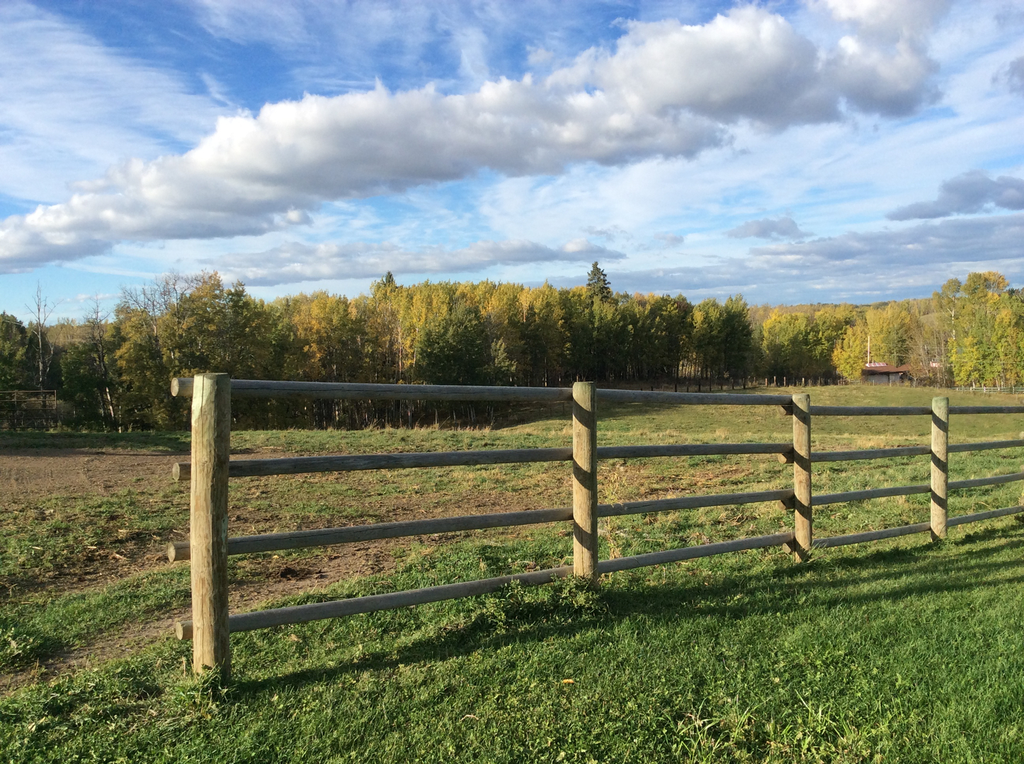 Fence Selection