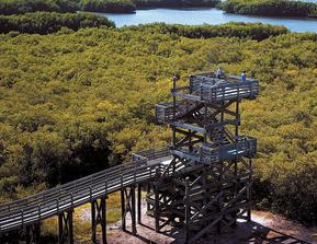 Areal view of observation tower at Weedon Island Preserve