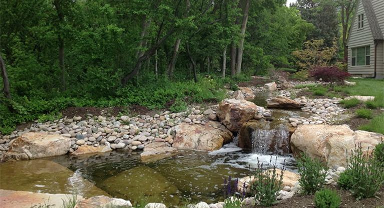 Pond construction for Pond building tips