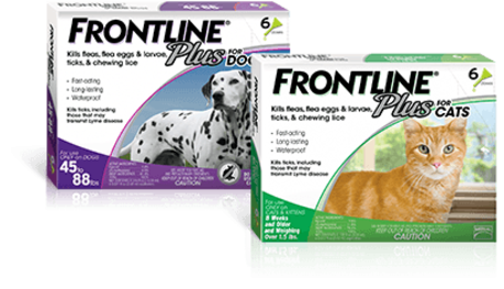 Frontline flea protection for dogs and cats, click for different packaging