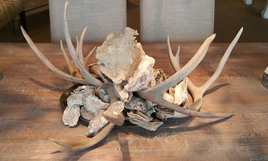 Oyster shells decor accessories deer antlers racks harvested accents