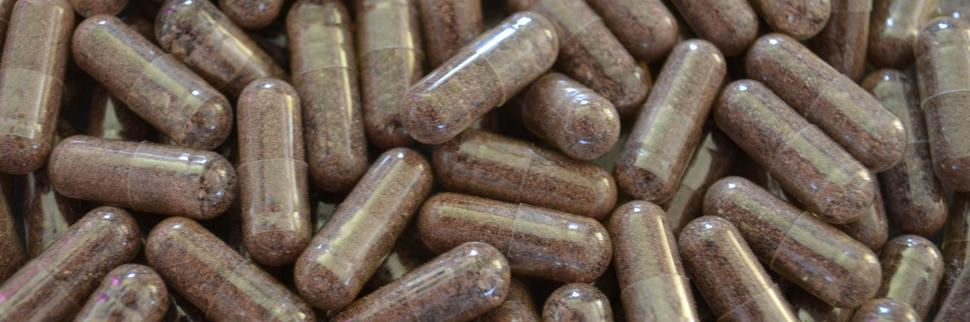 Placenta Encapsulation in Abbotsford, Mission, Langley, Chilliwack BC