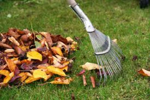Fall Cleaning Service and Cost Omaha NE | Price Cleaning Services Omaha