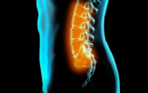 Allentown Chiropractor performs chiropractic manipulation to relieve pain and improve movement