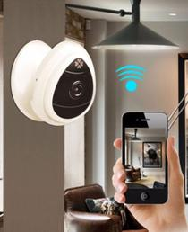 Smart Home Surveillance