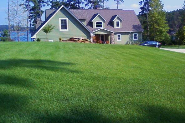 New Lawn of Fresh Sod in Johnson City