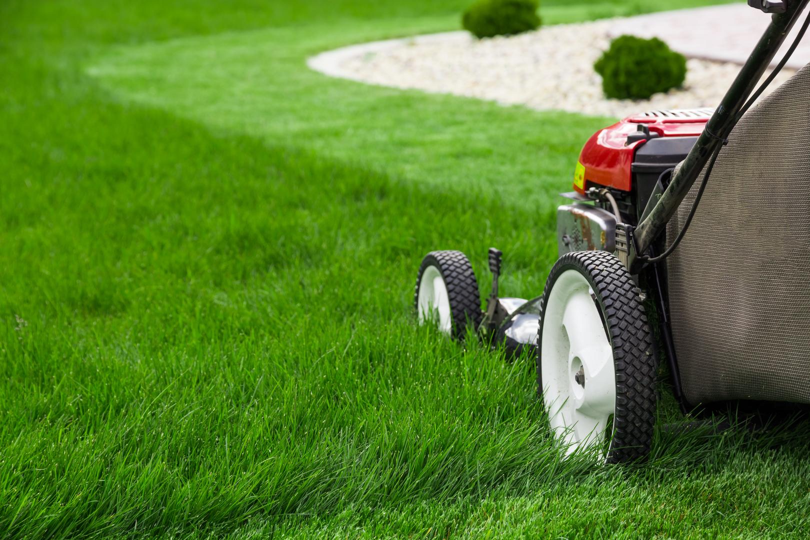 Home Lawn Mower Engine Diagram Gem State Small Repair