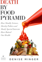 Death by Food Pyramid, Fitness, Trainer Nate, Orlando, Nutrition