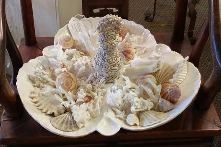 Shells sea ocean corals hand made by Melinda seashells