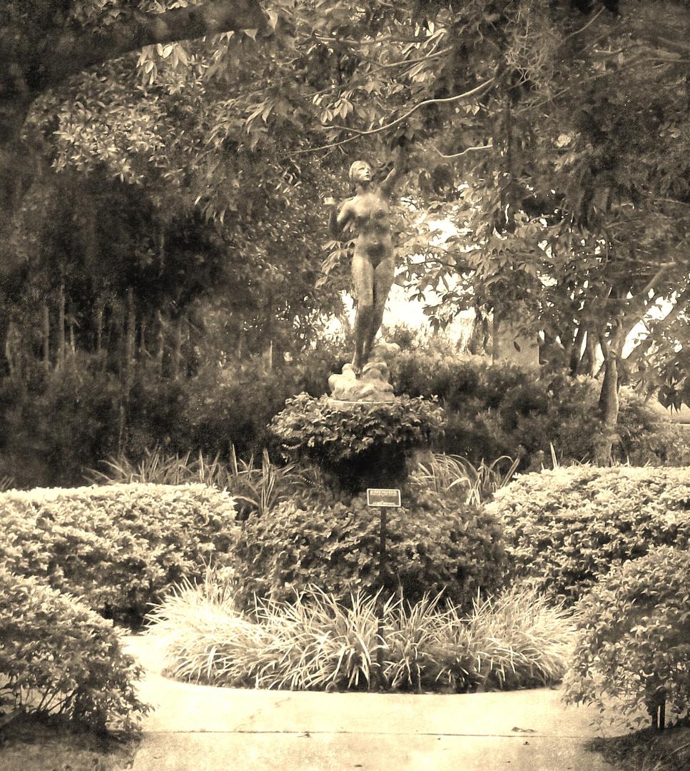 scene it productions polasek gardens