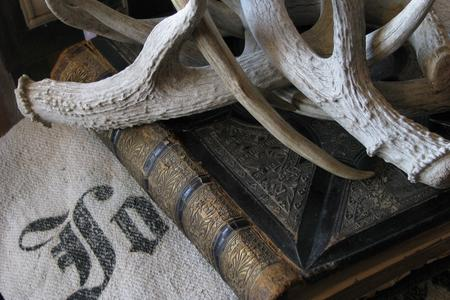 Fine antlers and antique books