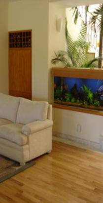 living room fish tank