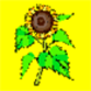 Sun Flower Kids Mystery Party facilitated by Amy Lilly In Virginia, Maryland and Washington, DC
