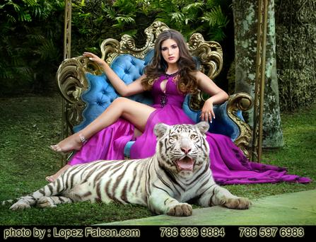 Photo Shoot With Baby Tiger quinceanera sweet 15 Exotic quinces miami