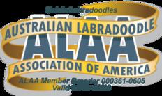 Home | Hale's Australian Labradoodles, Inc