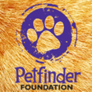 Petfinder Foundation Donation Page