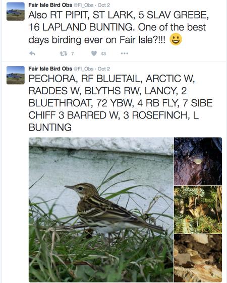 BLOG 9 Oct 2016 Fair Isle