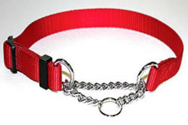 Tender Training Collar with embedded Choker Chain