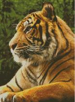 Cross Stitch Chart Pattern of aTiger