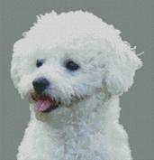 Cross Stitch Chart of a Bichon Frise