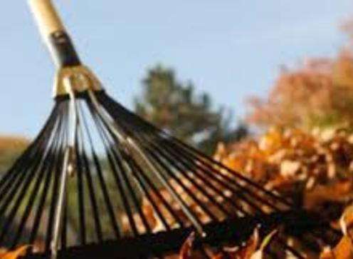 Fall Cleaning Service and Cost Edinburg Mission McAllen TX | RGV Janitorial Services