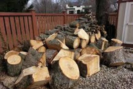 Looking for yard waste removal service in Omaha NE? Omaha Junk Disposal specialize in yard waste disposal and debris removal, including tree branch and storm cleanup services in Omaha NE! Our junk removal professionals also provide services for yard waste removal and other debris that might be cluttering up your yard. Schedule a yard waste removal service today! Free estimates!