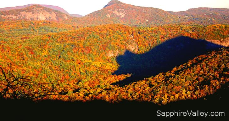 Shadow Bear Sapphire Valley Resort Smoky Blue Ridge Mountain
