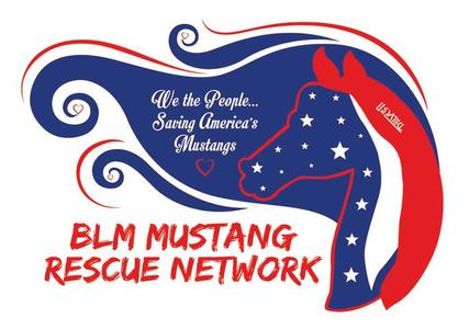 BLM Mustang Rescue Network Facebook Page