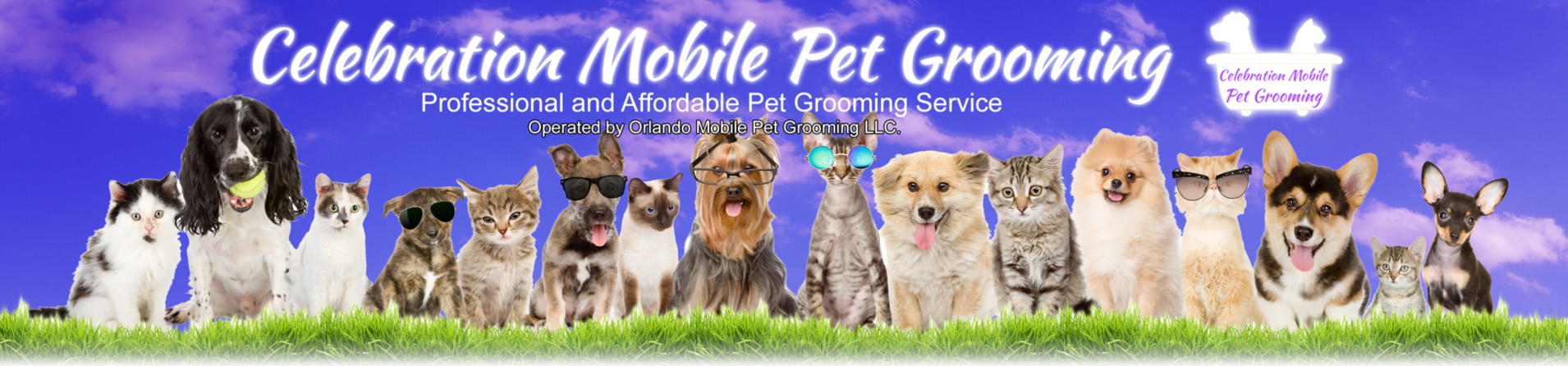 mobile pet grooming celebration service areas