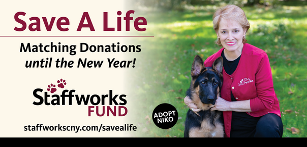 Staffworks Save A Life Campaign 2019