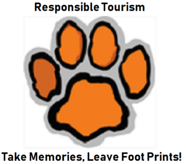 TAB Travels Responsible Tourism