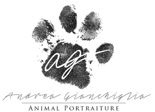 Logo for Animal Portraiture