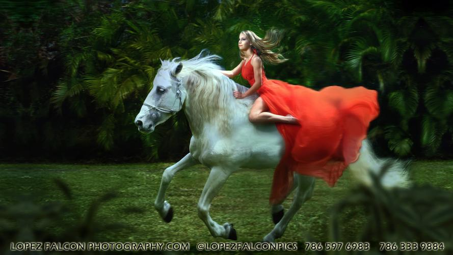 SWEET 15 QUINCEANERA WITH HORSE QUINCES HORSES CABALLO CABALLOS MIAMI