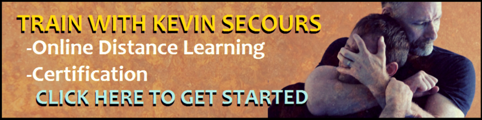 kevin secours, systema, certification, online training, distance learning