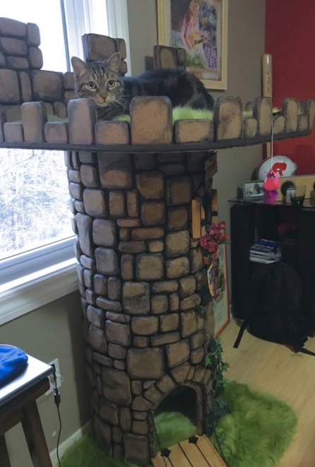 Castle cat condo for Castle cat tower