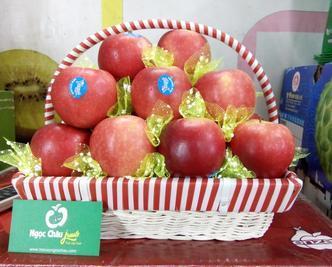 giỏ hoa quả, giỏ hoa quả nhập khẩu tại hà nội