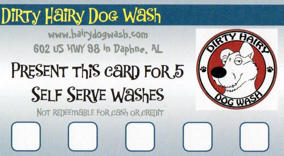 Services dirty hairy dog wash solutioingenieria Choice Image